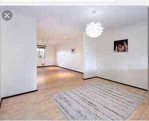 $270 Fully Renovated 2x1 Duplex in Balga Balga Stirling Area Preview