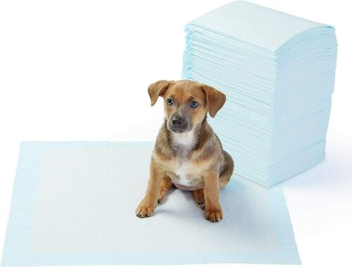 """AmazonBasics Dog and Puppy Potty Training Pad 22""""x 22"""" Great Absorbency 100 pads"""