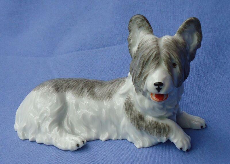 SKYE  SILKY YORKIE PAPILLON TERRIER BRIARD DRESDEN GERMANY DOG
