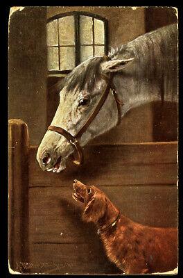 IRISH RED SETTER & HORSE STABLE GUNDOG ANTIQUE DOG POSTCARD by August Muller