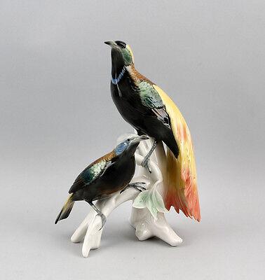 Porzellan Vogel Figur Paradiesvogel Ens 20x27cm 9941212