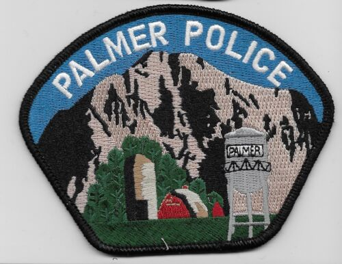 Palmer Police State Alaska AK Colorful