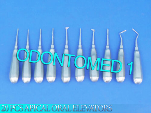 20 PCS APICAL ORAL DENTAL SURGERY ROOT ELEVATOR INSTRUMENTS