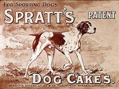 POINTER OLD STYLE SPRATTS DOG FOOD ADVERT GREAT DOG GREETINGS NOTE CARD