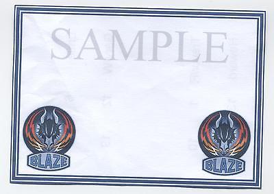 12 Ice Hockey blank Crested cards