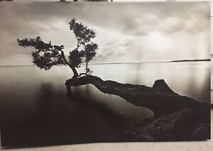 Black and white landscape painting
