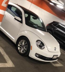 2016 beetle for sale