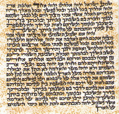 """LOT 5 Non Kosher Jewish MEZUZAH 4"""" / 10cm Large Scroll Klaf Parchment Blessing"""