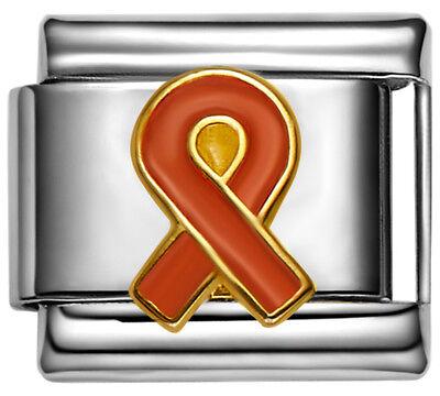 RIBBON LEUKEMIA AWARENESS Enamel Italian 9mm Charm NC209 Fits Nomination Classic Awareness Ribbon Enamel Italian Charm