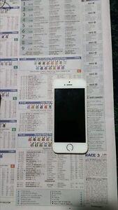iPhone 5s Auburn Auburn Area Preview