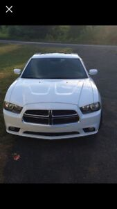 LOOKING FOR FRONT BUMPER *2011 Dodge Charger*