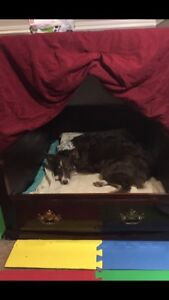 Homemade whelping box or large dog bed