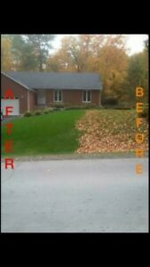 Fall Leaf Clean Ups Free Quotes