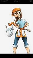 Professional House Cleaner Available