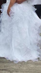 Plus size wedding dress size 18-24 with all attire