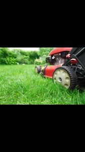 Lawn mowing in the Morna Heights area