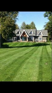 LawnCutting & Trimming Free Quotes