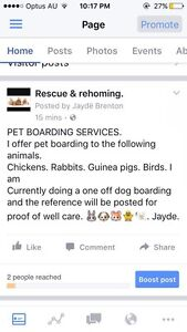 Please go onto my page. Rescue & rehoming Parafield Gardens Salisbury Area Preview