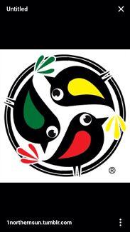 3 LITTLE BIRDS YARD MAINTENANCE Singleton Singleton Area Preview
