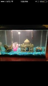 FISH TANK 10 gallons