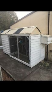 Walk in Aviary with storage room and 3 safety doors South Perth South Perth Area Preview