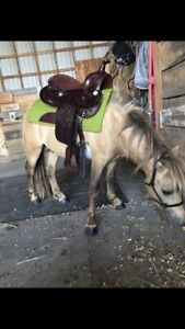 Mini horse saddle