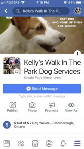 Dog Services
