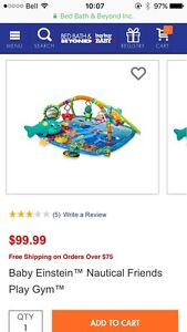 Baby Einstein play may