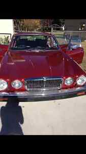 1985 Jaguar Sovereign Sedan reduced to sell by 1000 Bullaburra Blue Mountains Preview