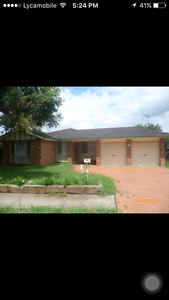 Room for rent $ 130 Quakers Hill Blacktown Area Preview