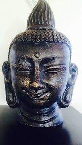 STUNNING BUDDAH HEADS Merrimac Gold Coast City Preview
