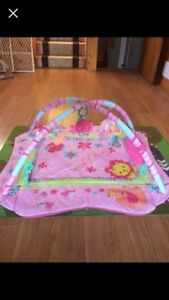 Baby play gym and play mat