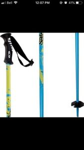 Looking for these ski poles