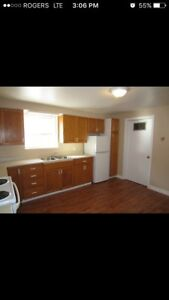 3 Bedroom lower level duplex in Point Park