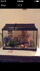 5.5G fish tank w/ accessories