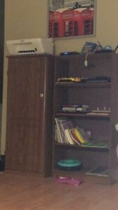 Book shelf and a filing cabinet