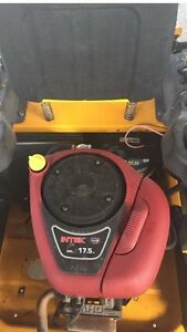 $86 push mower service Victoria Point Redland Area Preview