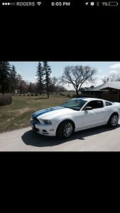 2014 Mustang **low Kms,Saftied and warranty**