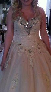 Beautiful Champagne Ball Gown