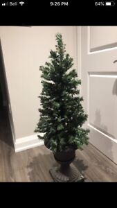 Two Indoor/outdoor Christmas Trees in a vase