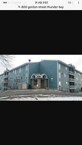 2 bdrm condo avail immed.