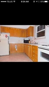1 Bedroom - Southend - Sublet