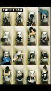 Funny toilet booth pictures poster  Maxi size 24