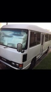Toyota coaster Guanaba Gold Coast West Preview