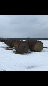 Balles de Foin a vendre 75$ ch / haybales for sale 75$ each
