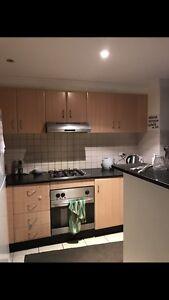 Share room  for man $135 in city Sydney City Inner Sydney Preview