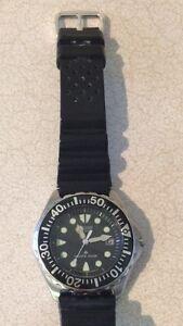 Dive, diving watch eco drive citizen
