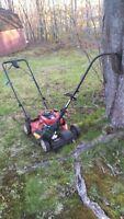 Lawn mowing job stellarton and Westville