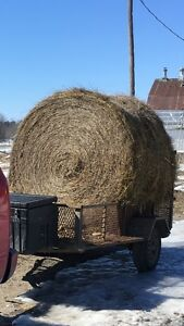 Hay for sale/Foin à vendre