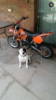 2004 KTM 65 SX Springfield Lakes Ipswich City Preview